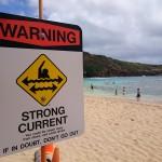 ハワイに来た?ハナウマ湾に行ってみよう!絶対オススメのスポットです!