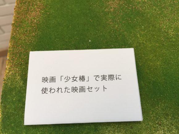 Shojotsubaki_maruo_13