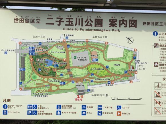 nikotamakouen8