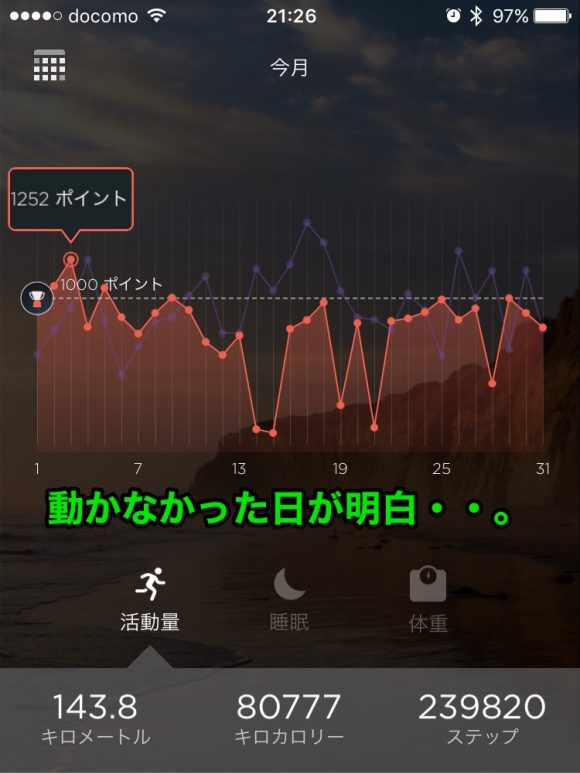 misfit_ray_56
