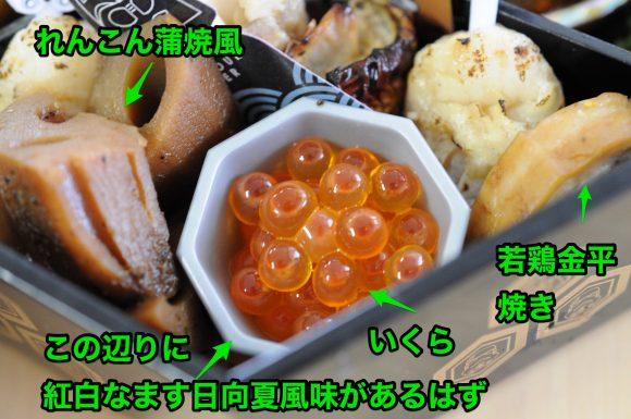 sw_osechi_54c