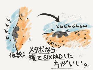 SIXPAD(シックスパッド)を購入。Abs Fit はメタボ腹にも効くのか?(その2)