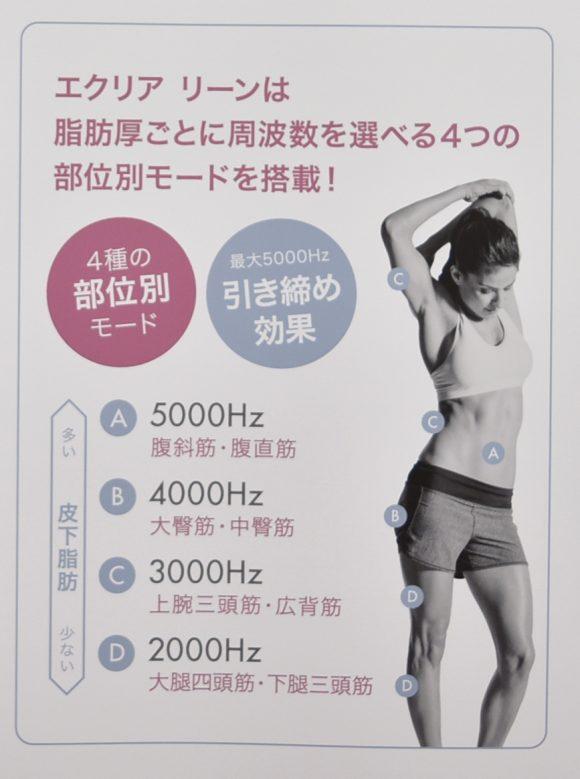 エクリアリーン 皮下脂肪とモードの関係