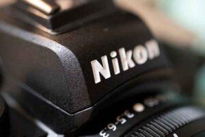 「NIKKOR Z MC 50mm f/2.8」で撮影